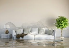 Flooded livingroom with couch and wet wall